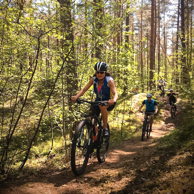 Mountainbikecyklister på skogsväg