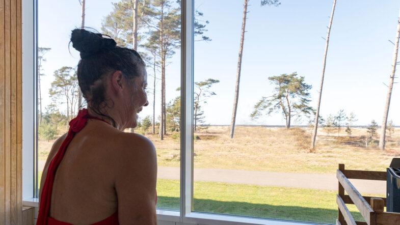 Bastu med panoramafönster