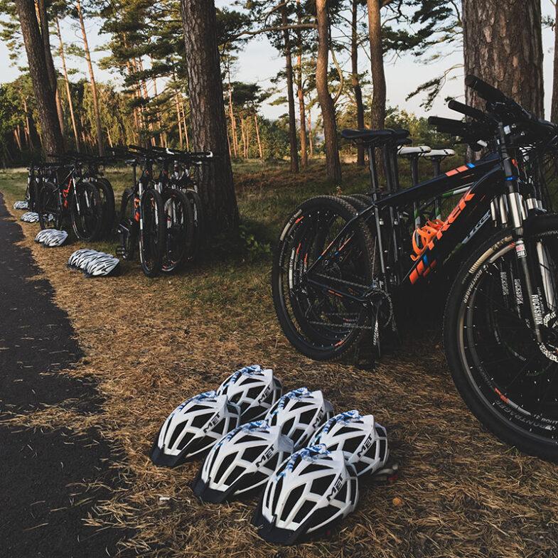 Mountainbike cyklar uppradade vid träd