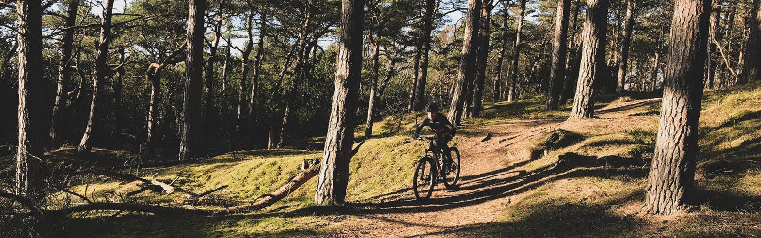 Ridge-cyklist på skogsväg