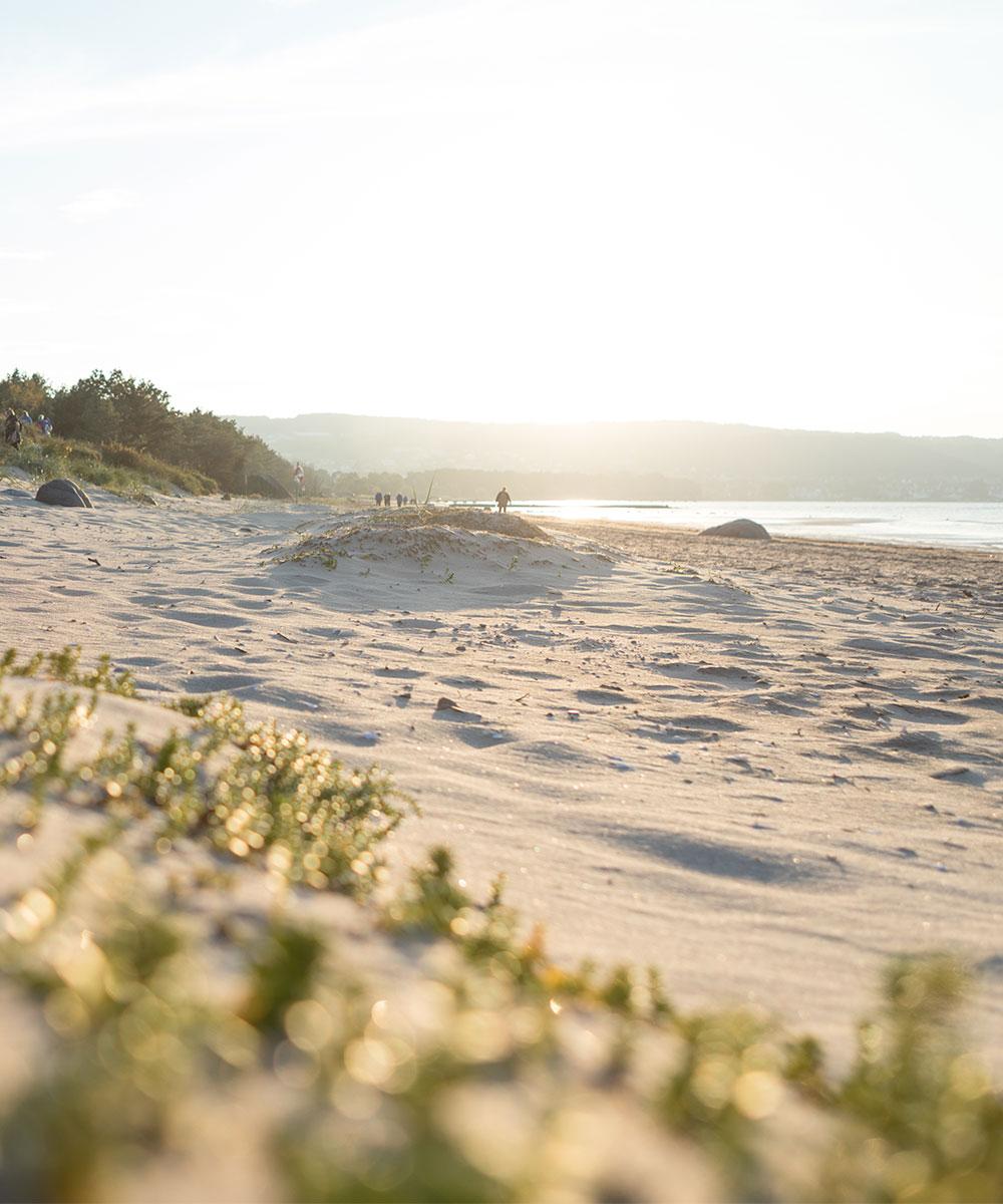 Människor som promenerar på sandstranden