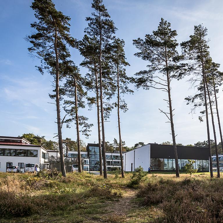 Hotellbyggnad och poolhus från strandskog.