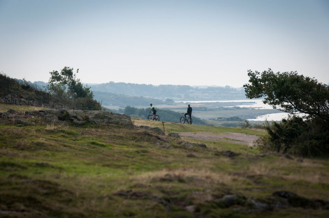 MTB med havsutsikt Hovs Hallar i Skåne